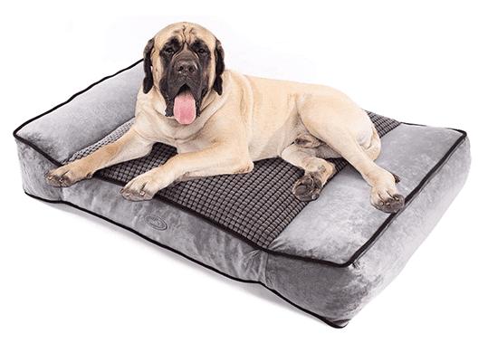 Cama perro grande Amazon Pecute