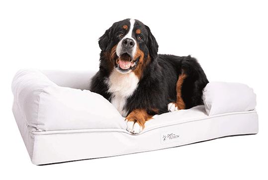 Cama perro grande Amazon Petfusion