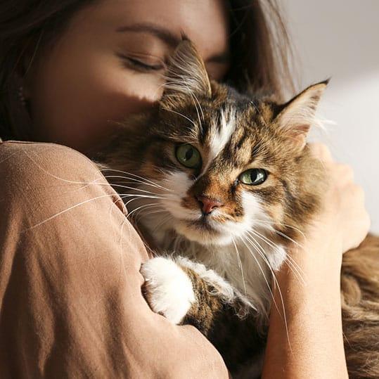 Mujer mimos gato