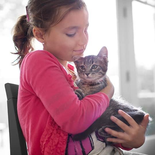 Niña abrazando gato