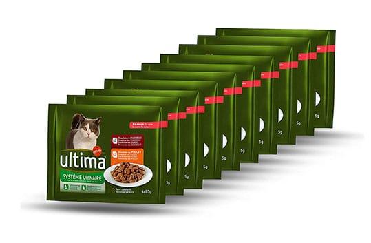 Comida húmeda gatos tracto urinario Última Amazon