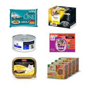 8 opciones de comida húmeda para gatos