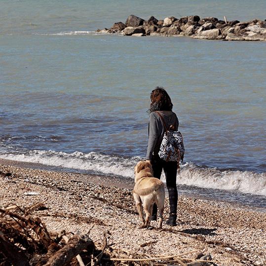 Playas para perros. Mujer paseando con su perro por una playa de rocas