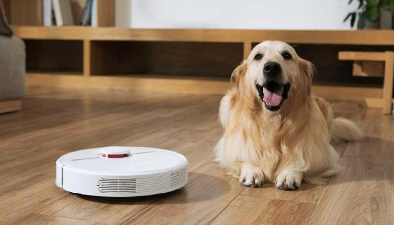 aspirador para alergia a los perros
