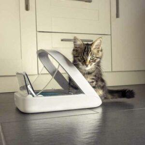 comedero automatico para gatos surefeed